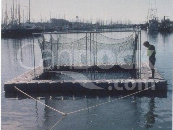 Aquaculture 4